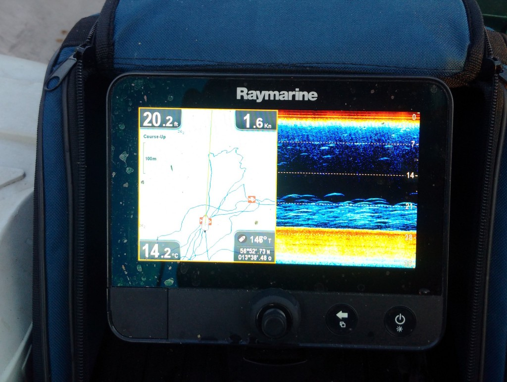 ECHOLOT/GPS Raymarine Dragonfly7